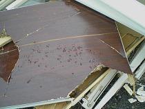 Holzentsorgung Holzmüll Holzabfall