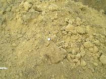 Bodenentsorgung Aushubboden Gartenerde
